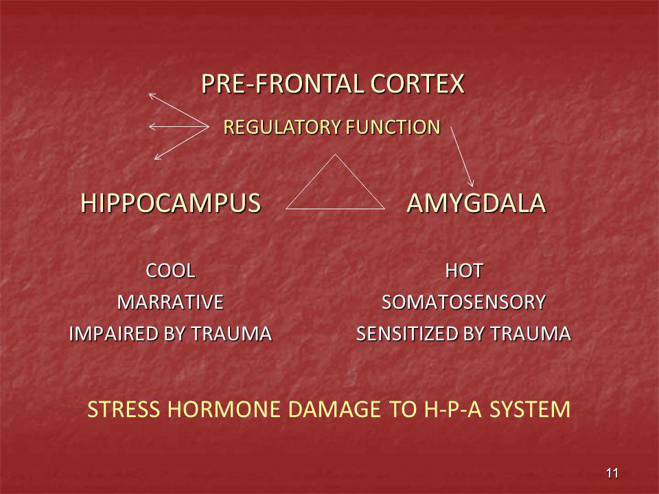 STRESS HORMONE DAMAGE TO H-P-A SYSTEM