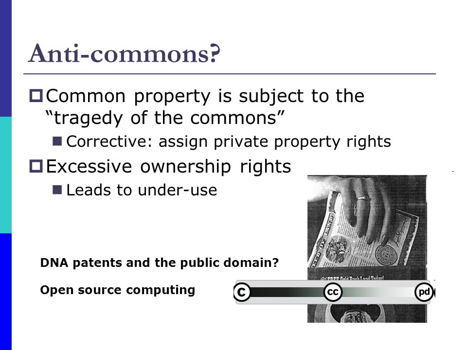 Anti-commons Common property is subject to the tragedy of the commons Corrective: assign private property rights.