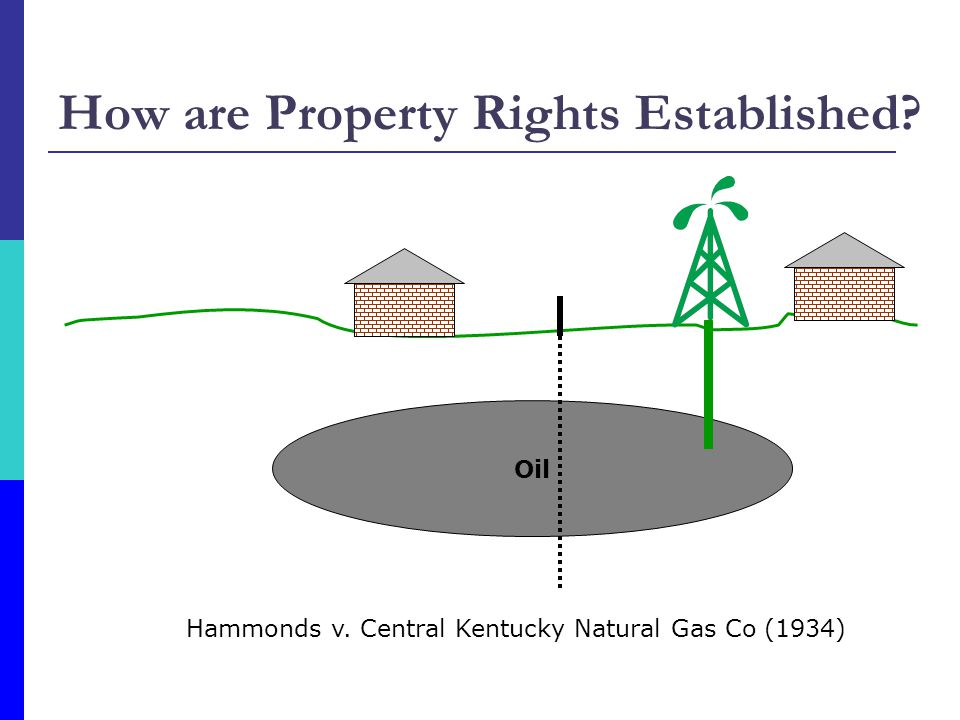 How are Property Rights Established
