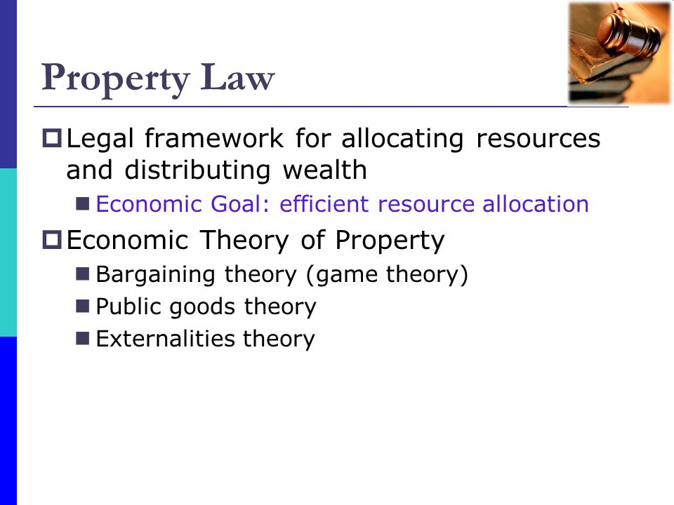 Property Law Legal framework for allocating resources and distributing wealth. Economic Goal: efficient resource allocation.