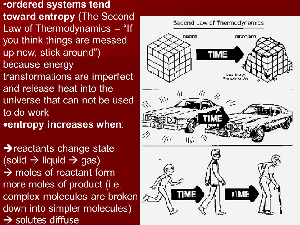 ordered systems tend toward entropy (The Second Law of Thermodynamics = If you think things are messed up now, stick around ) because energy transformations are imperfect and release heat into the universe that can not be used to do work