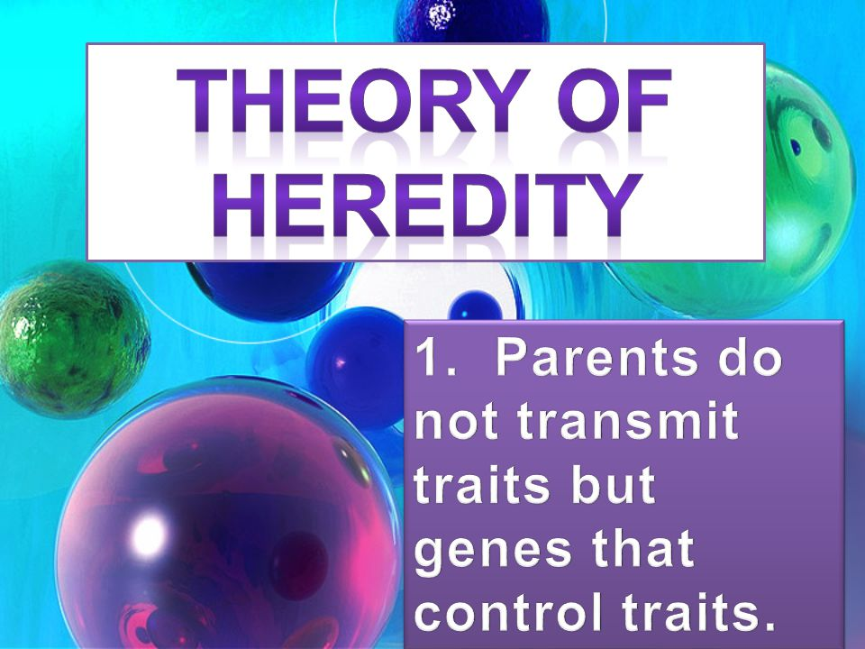THEORY OF HEREDITY 1. Parents do not transmit traits but genes that control traits.