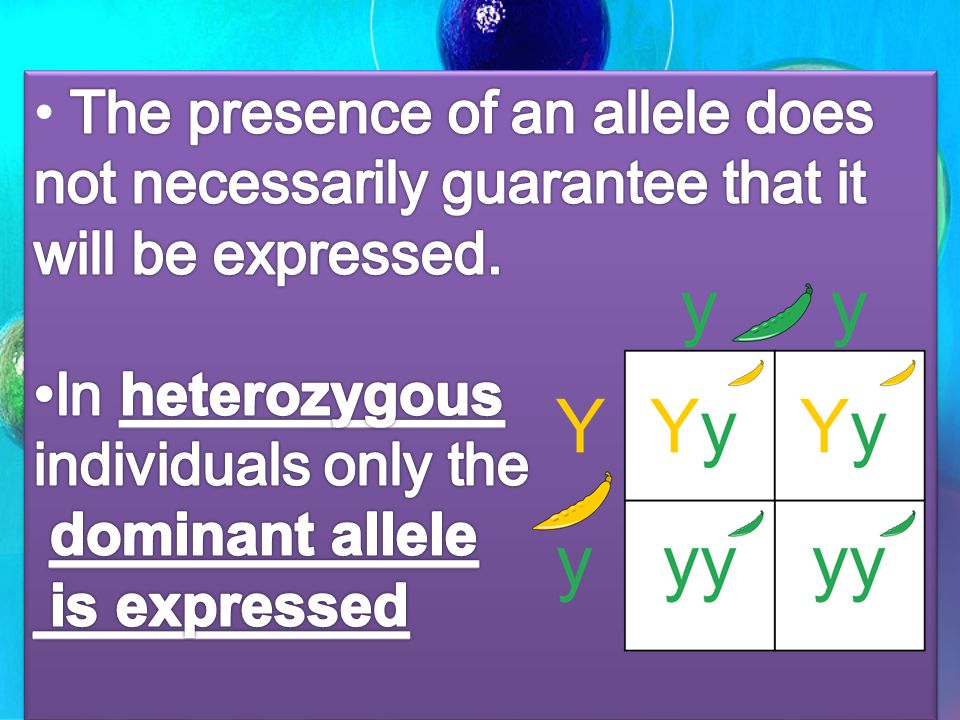 The presence of an allele does not necessarily guarantee that it will be expressed.
