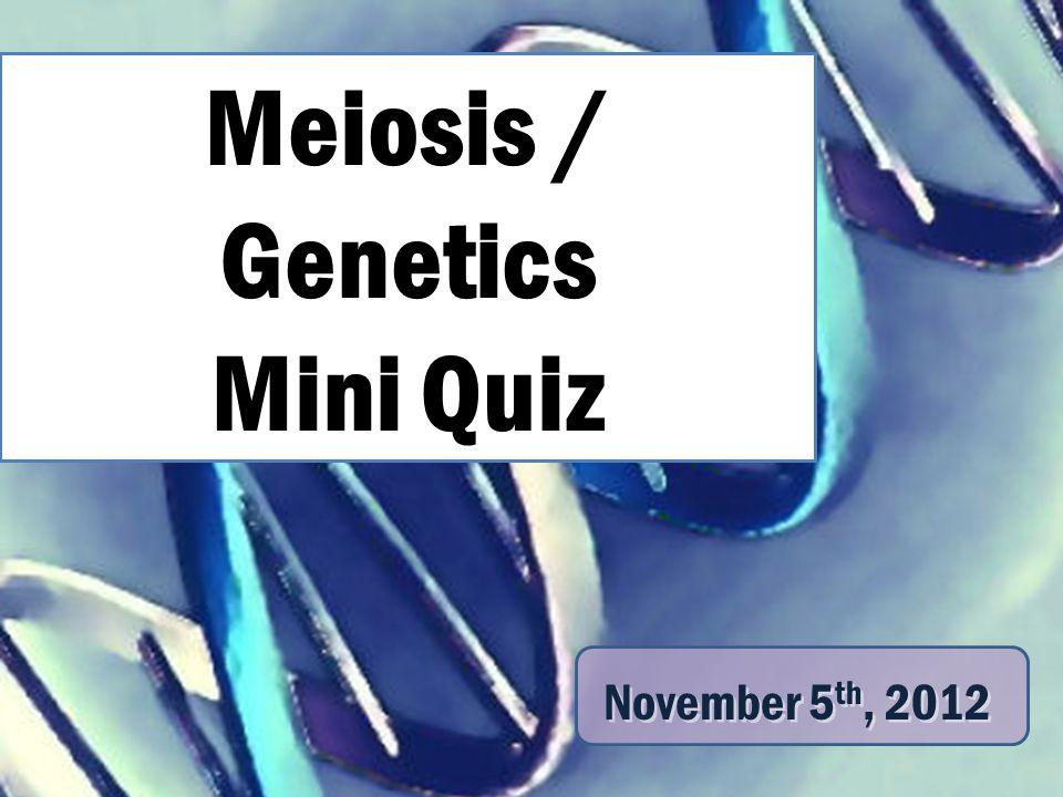 Meiosis / Genetics Mini Quiz