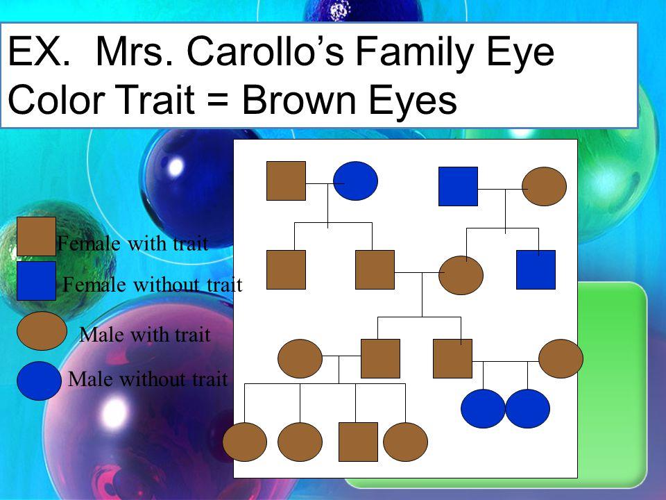 EX. Mrs. Carollo's Family Eye Color Trait = Brown Eyes