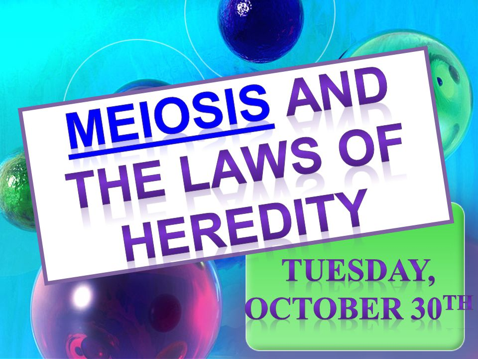 Meiosis and The Laws of Heredity