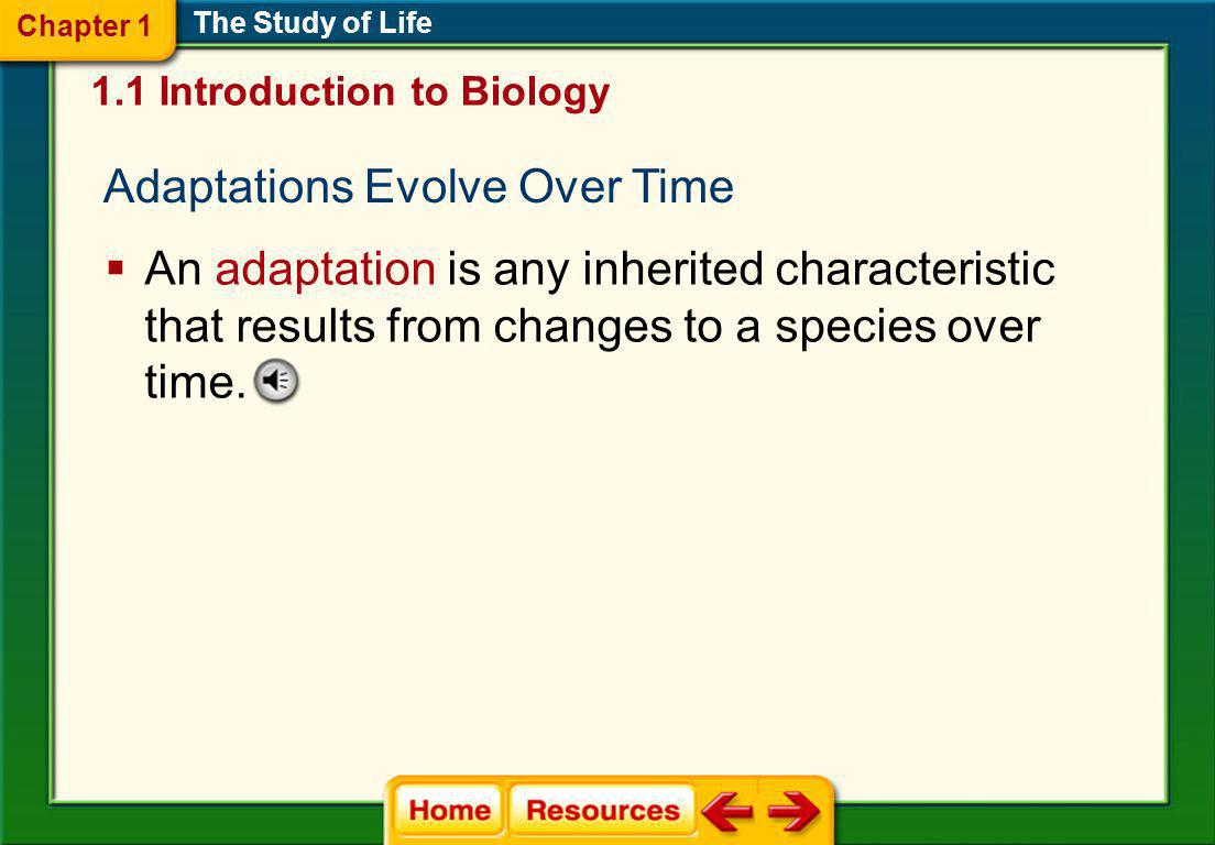 Adaptations Evolve Over Time