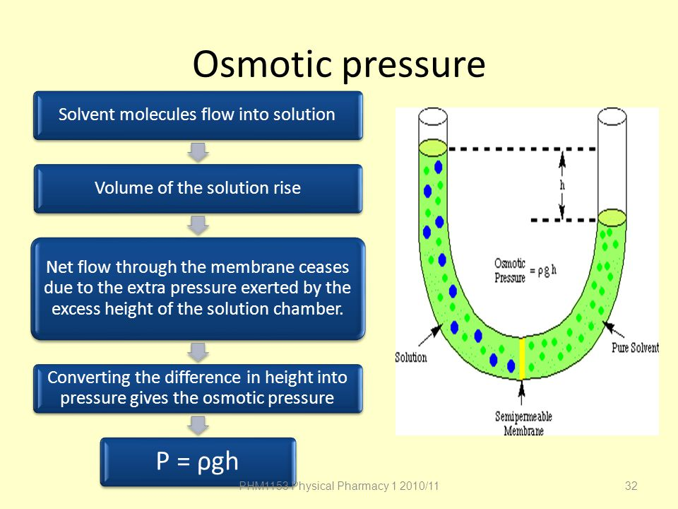 Osmotic pressure P = ρgh