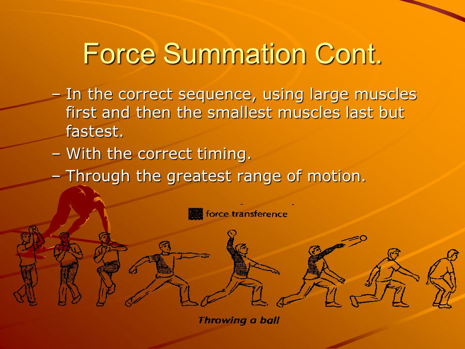Force Summation Cont. In the correct sequence, using large muscles first and then the smallest muscles last but fastest.