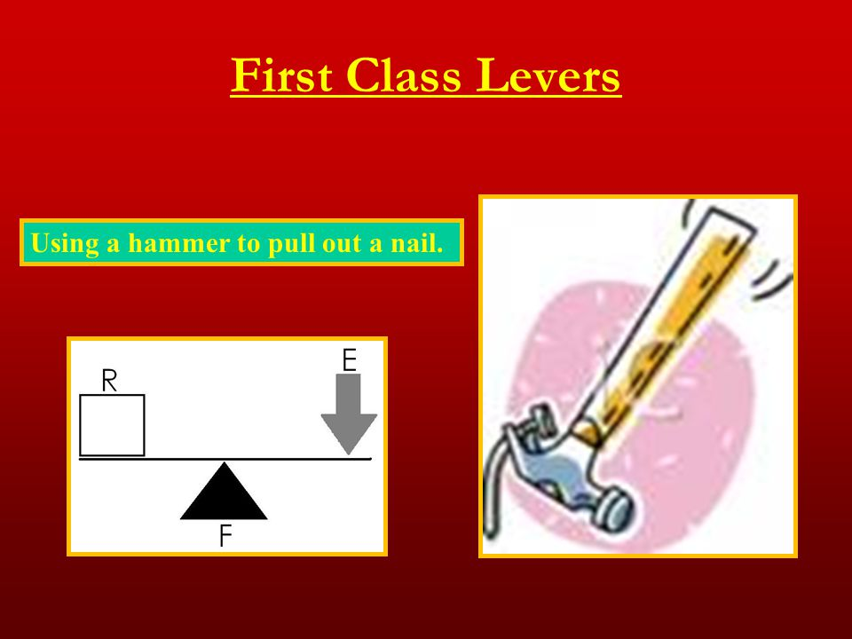 First Class Levers Using a hammer to pull out a nail.