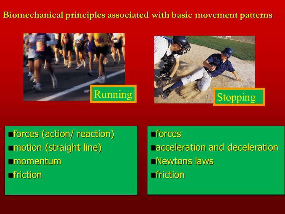 Biomechanical principles associated with basic movement patterns