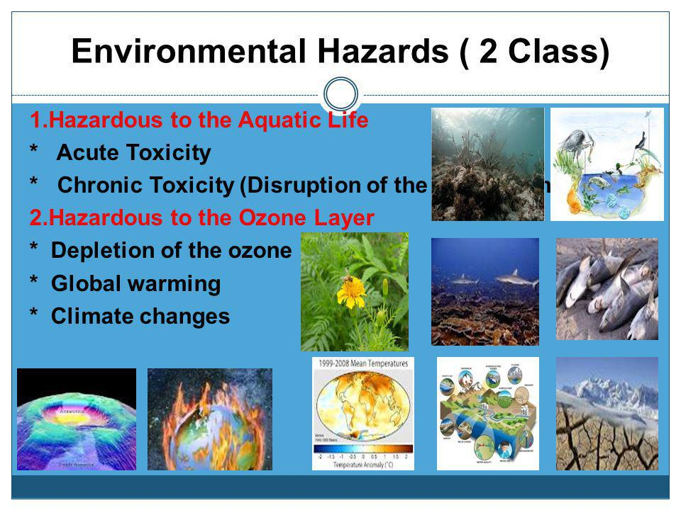Environmental Hazards ( 2 Class)