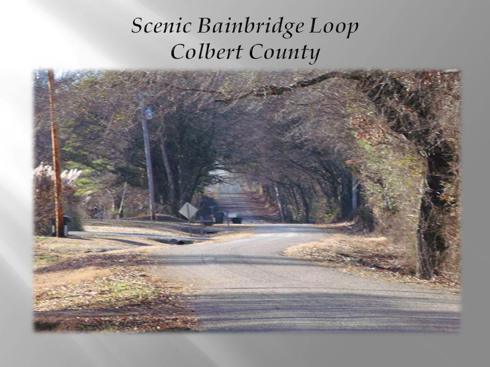 Scenic Bainbridge Loop Colbert County