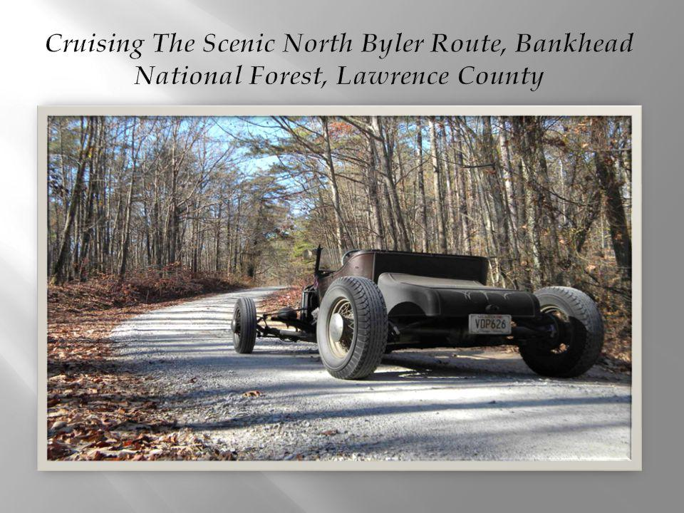 Cruising The Scenic North Byler Route, Bankhead National Forest, Lawrence County
