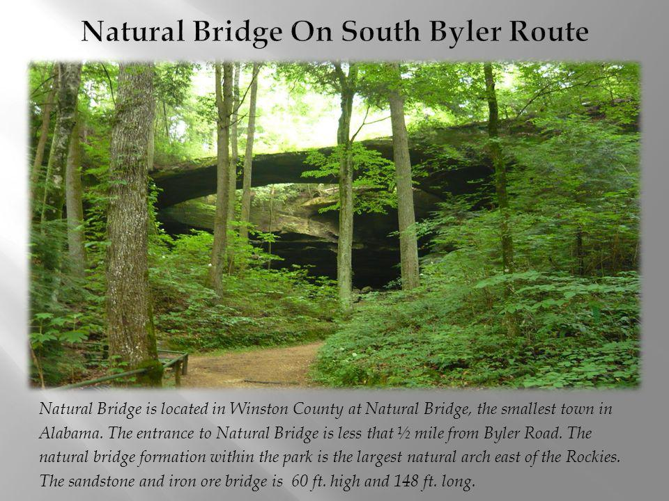Natural Bridge On South Byler Route