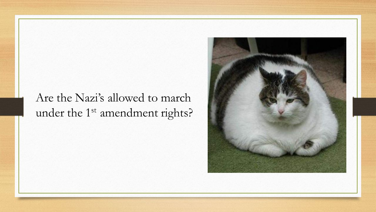 Are the Nazi's allowed to march under the 1st amendment rights