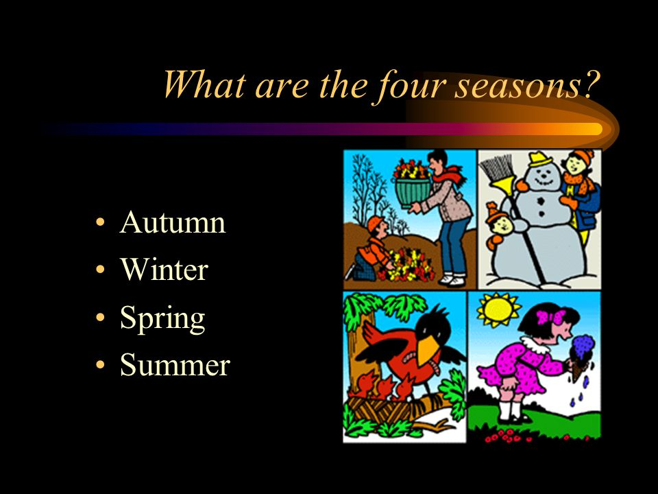 What are the four seasons
