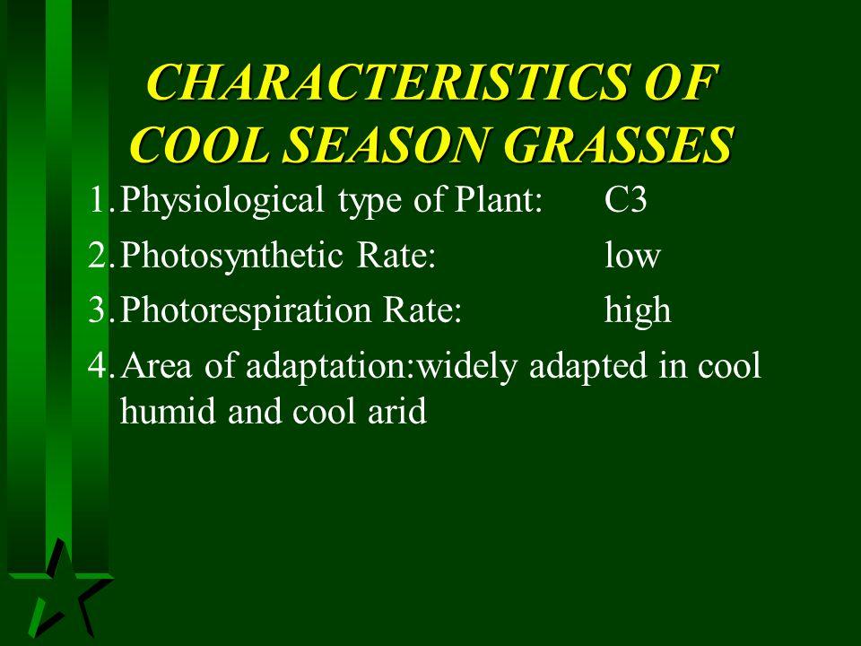 CHARACTERISTICS OF COOL SEASON GRASSES