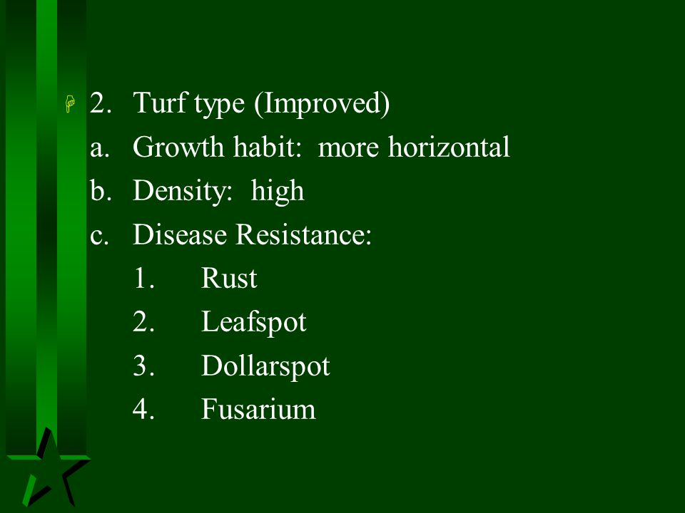 2. Turf type (Improved) a. Growth habit: more horizontal. b. Density: high. c. Disease Resistance: