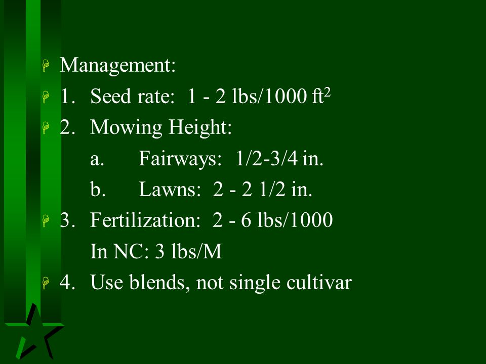 Management: 1. Seed rate: 1 - 2 lbs/1000 ft2. 2. Mowing Height: a. Fairways: 1/2-3/4 in. b. Lawns: 2 - 2 1/2 in.