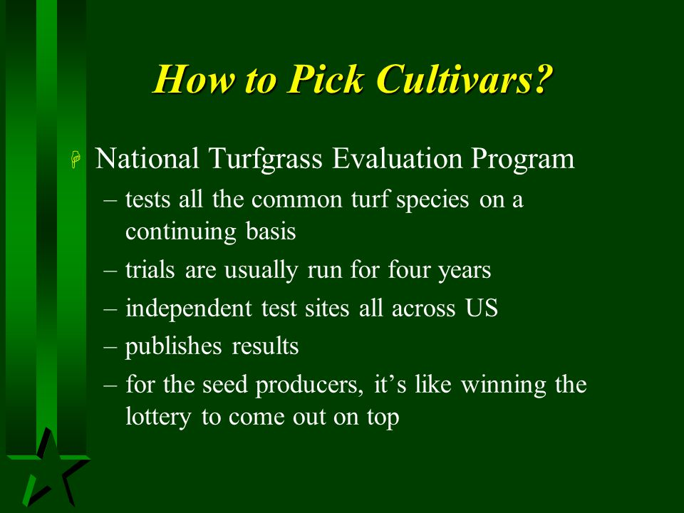 How to Pick Cultivars National Turfgrass Evaluation Program