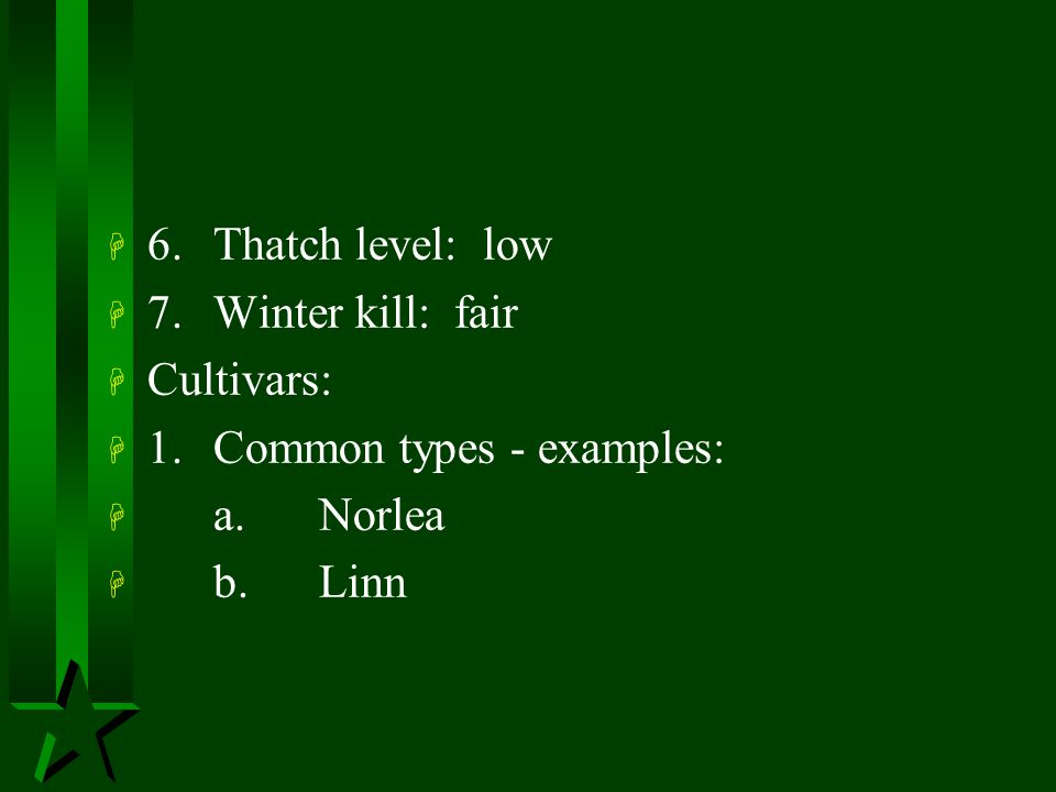6. Thatch level: low 7. Winter kill: fair. Cultivars: 1. Common types - examples: a. Norlea.