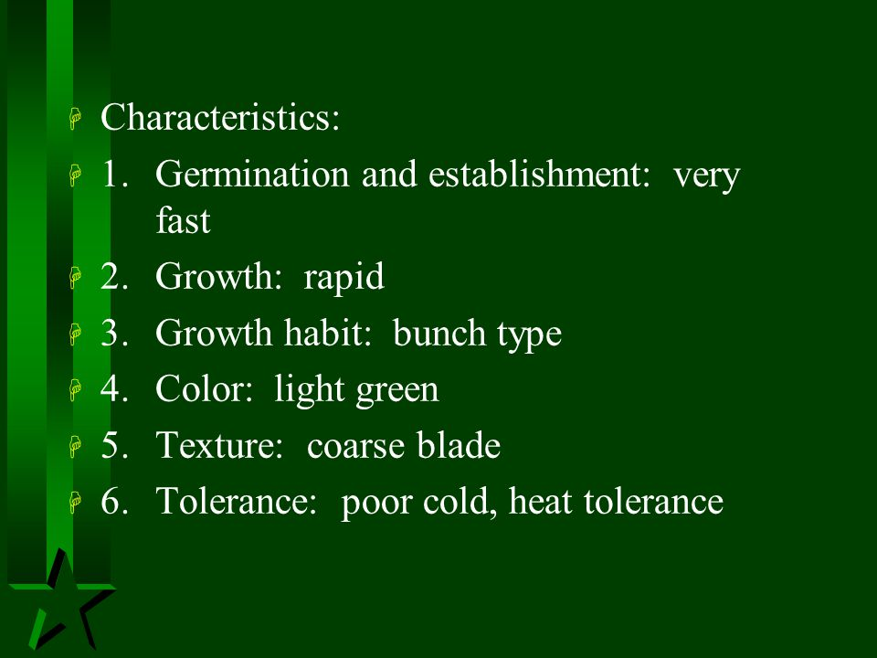 Characteristics: 1. Germination and establishment: very fast. 2. Growth: rapid. 3. Growth habit: bunch type.