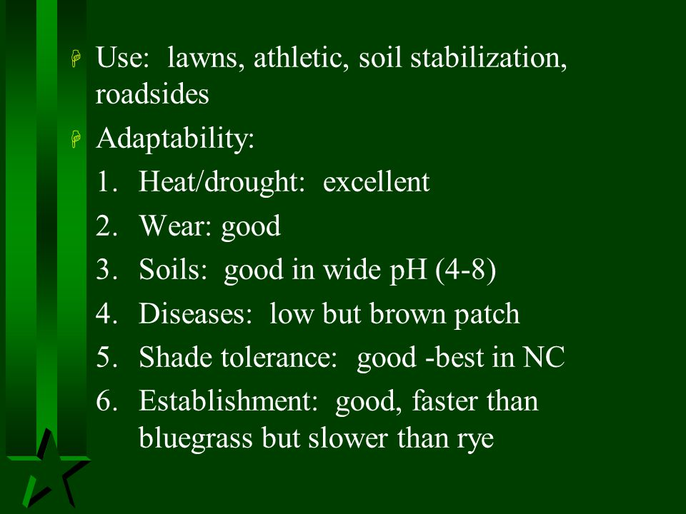 Use: lawns, athletic, soil stabilization, roadsides