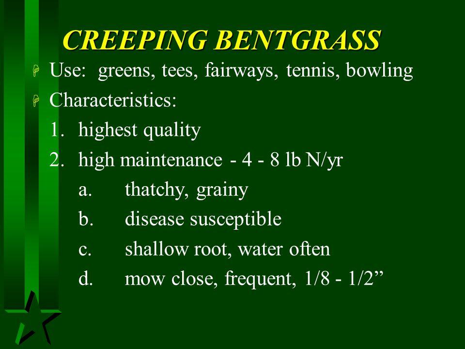 CREEPING BENTGRASS Use: greens, tees, fairways, tennis, bowling