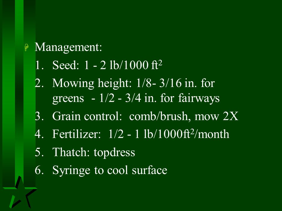 Management: 1. Seed: 1 - 2 lb/1000 ft2. 2. Mowing height: 1/8- 3/16 in. for greens - 1/2 - 3/4 in. for fairways.