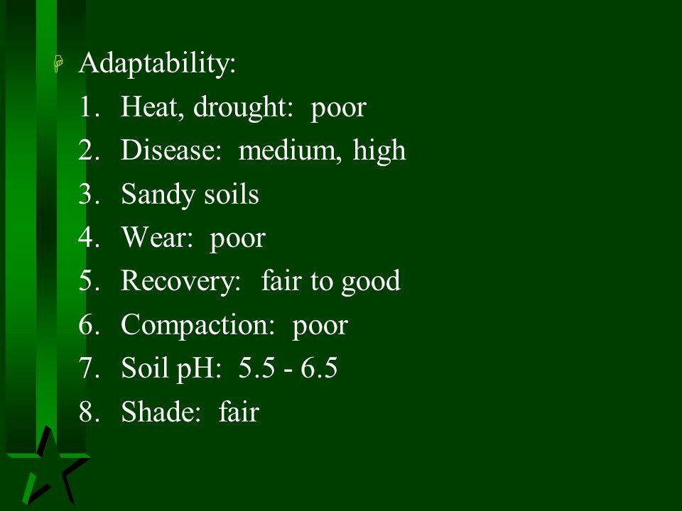 Adaptability: 1. Heat, drought: poor. 2. Disease: medium, high. 3. Sandy soils. 4. Wear: poor.