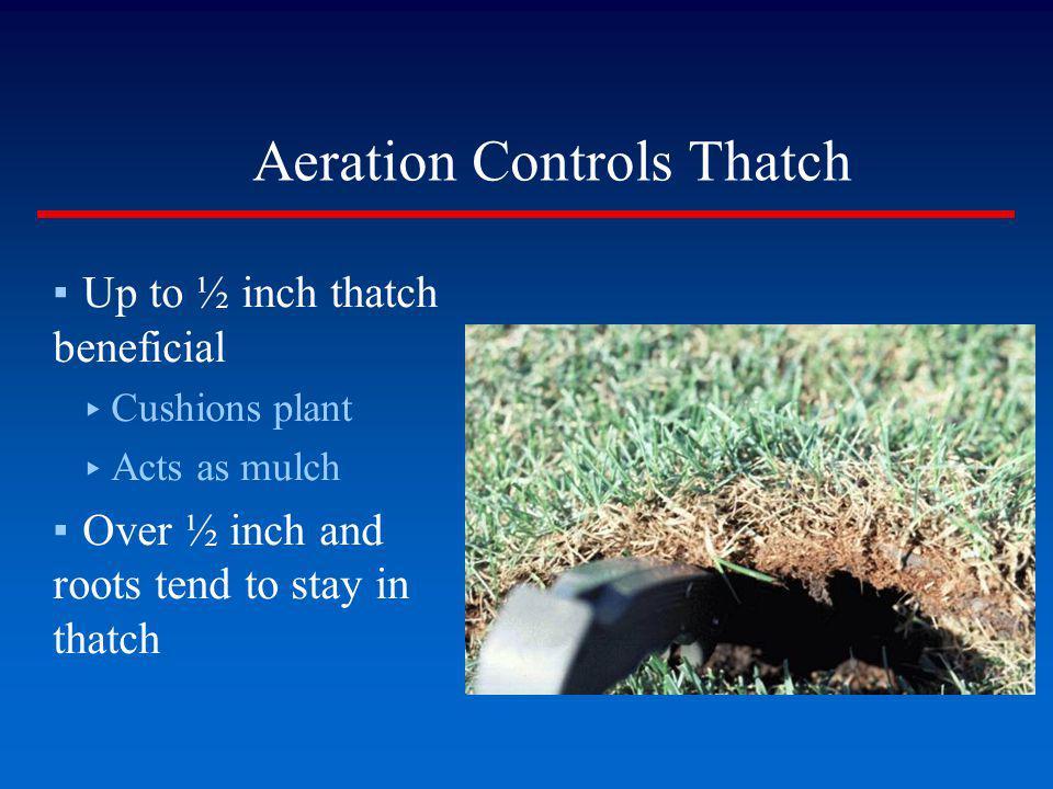 Aeration Controls Thatch