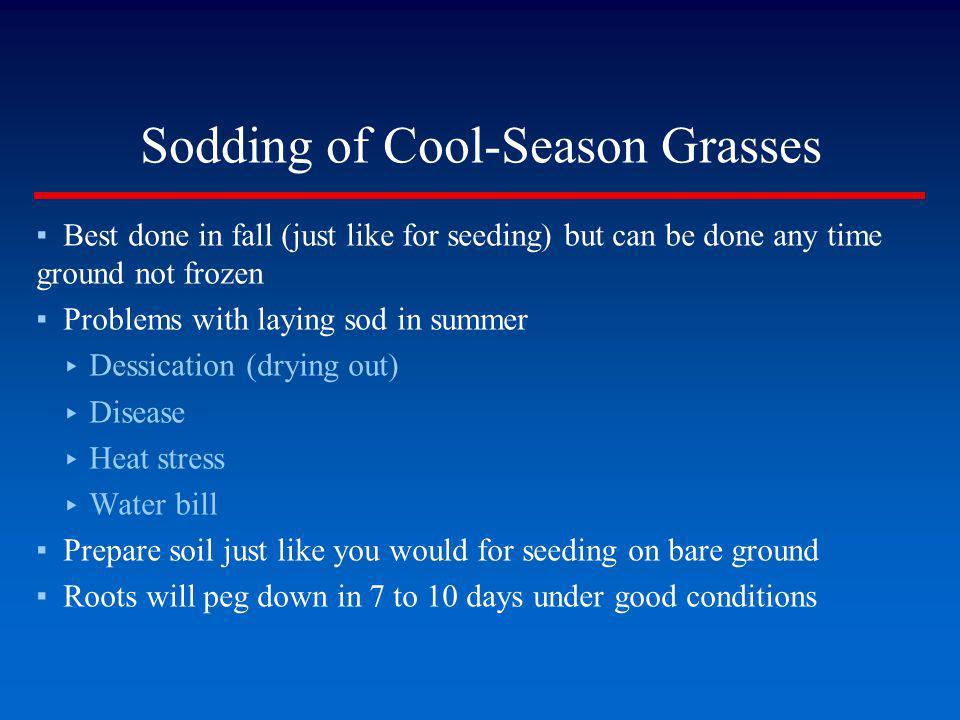 Sodding of Cool-Season Grasses