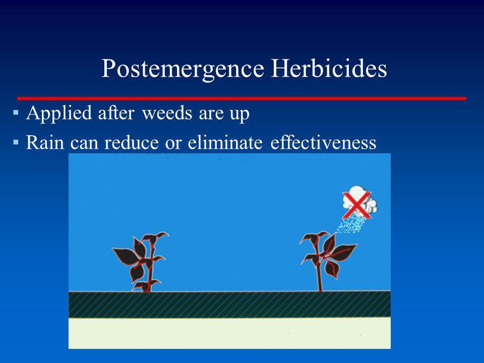 Postemergence Herbicides