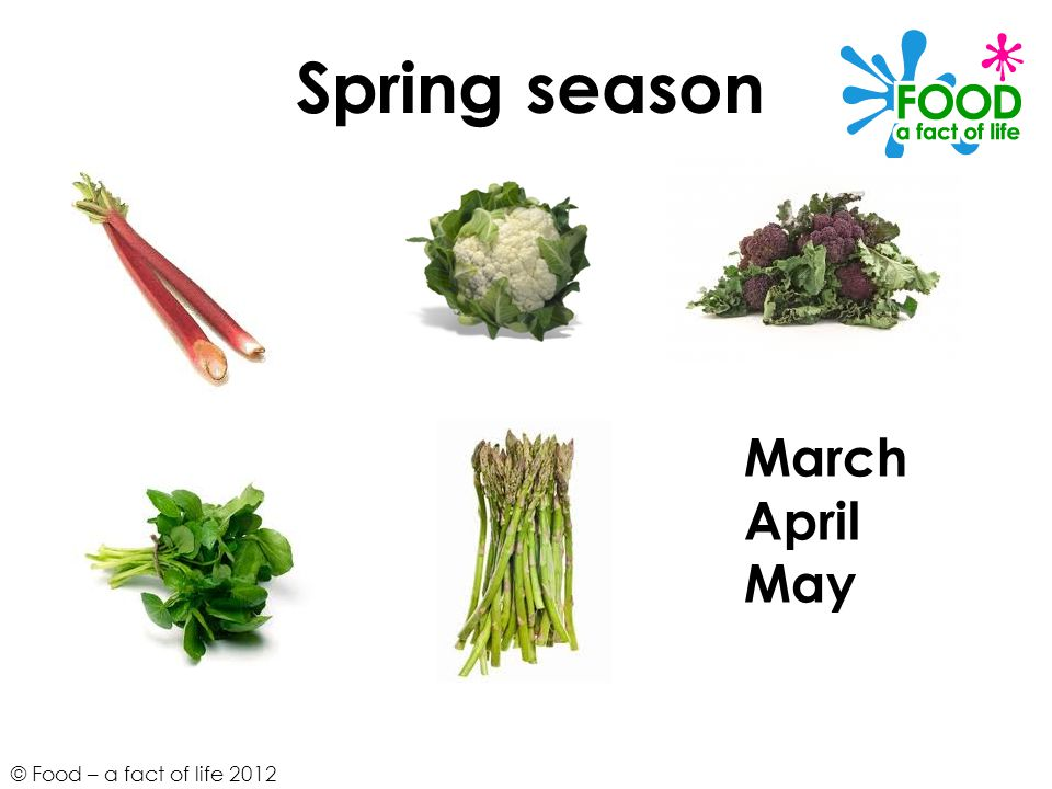 Spring season March April May