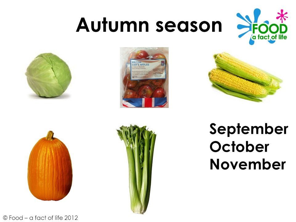 Autumn season September October November