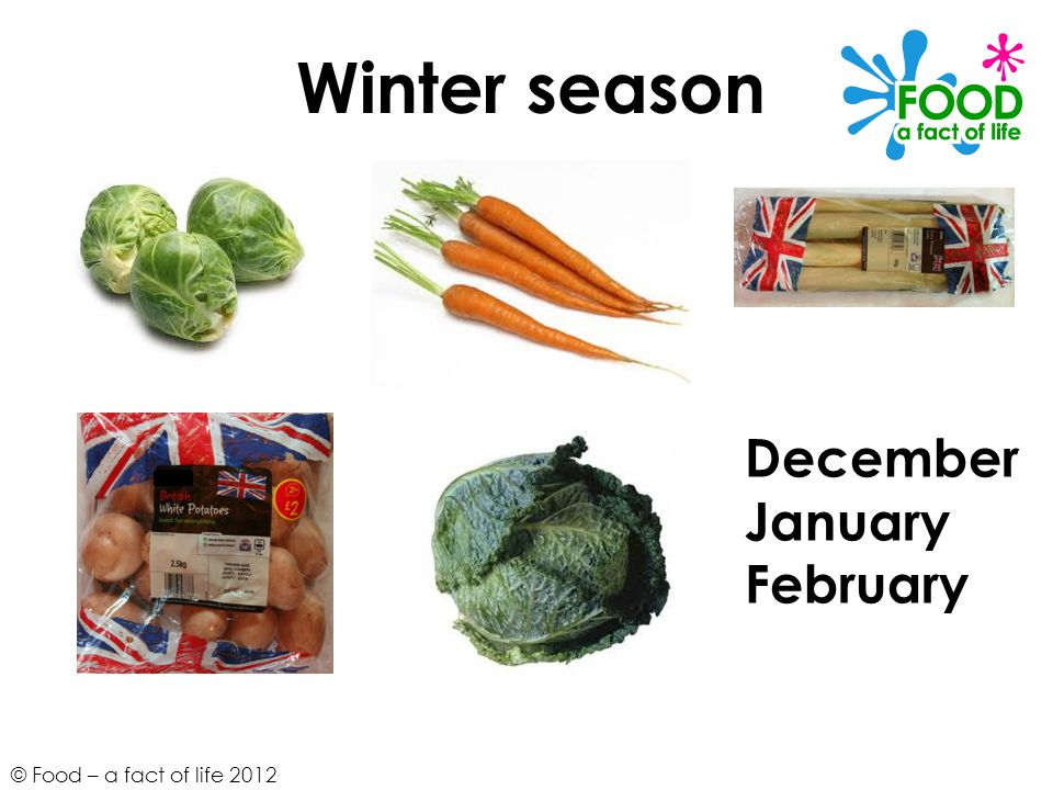 Winter season December January February