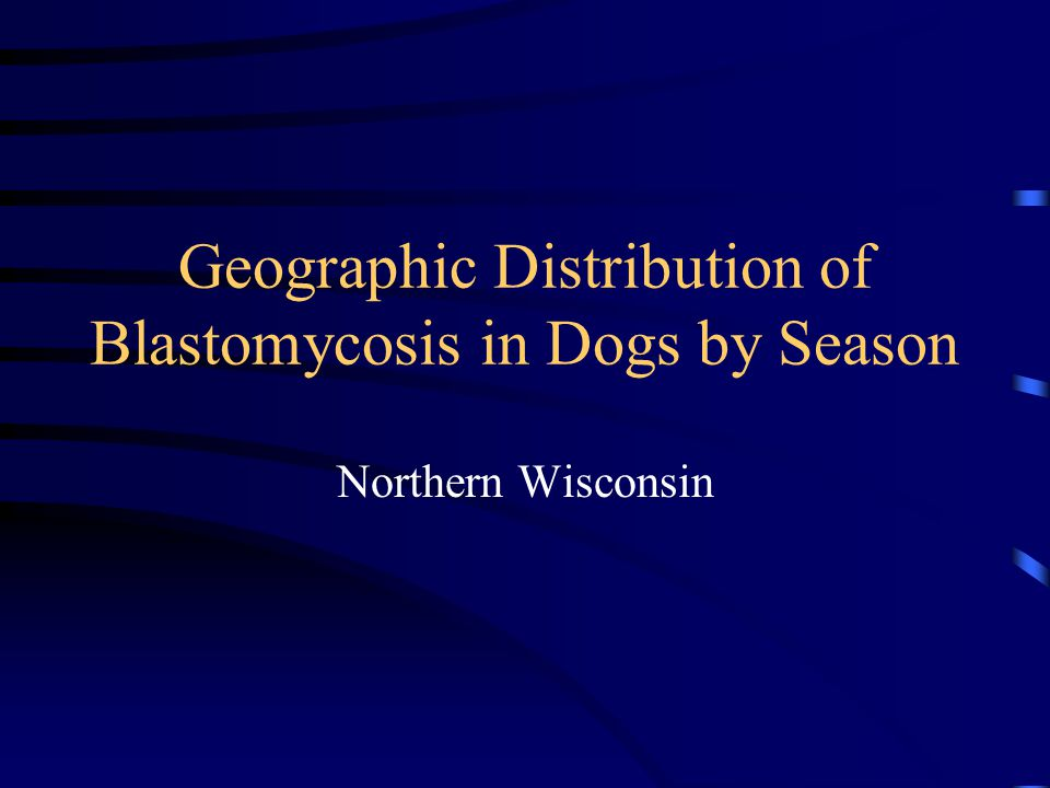 Geographic Distribution of Blastomycosis in Dogs by Season