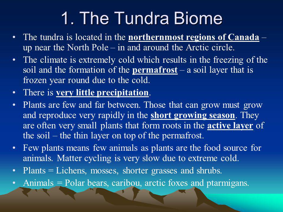 1. The Tundra Biome The tundra is located in the northernmost regions of Canada – up near the North Pole – in and around the Arctic circle.