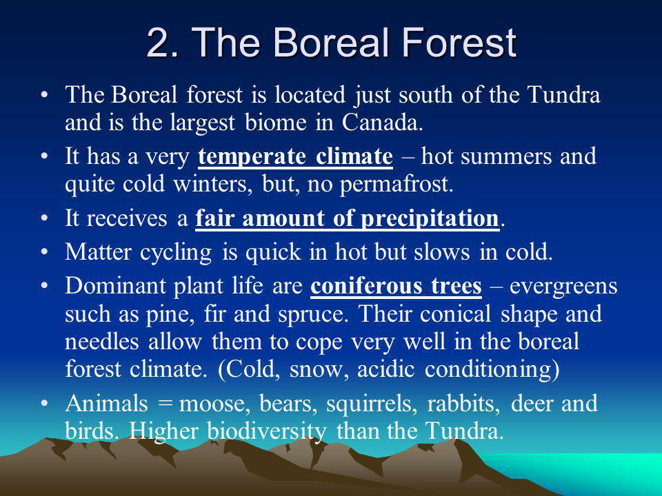 2. The Boreal Forest The Boreal forest is located just south of the Tundra and is the largest biome in Canada.