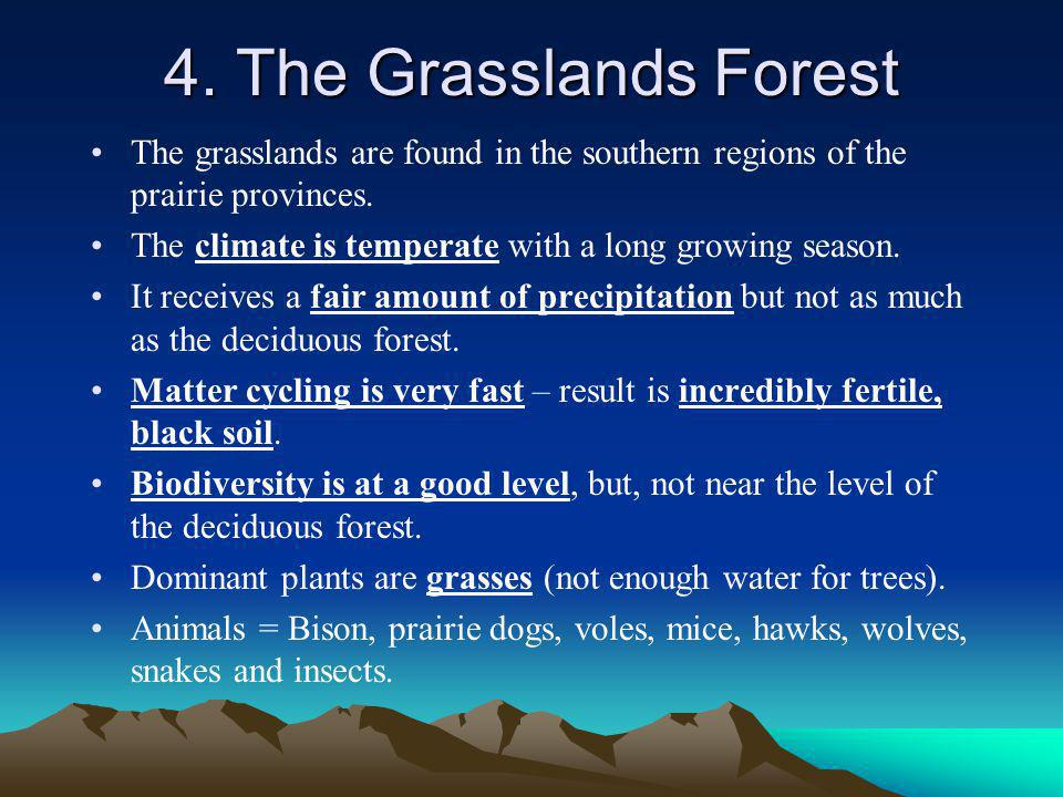 4. The Grasslands Forest The grasslands are found in the southern regions of the prairie provinces.
