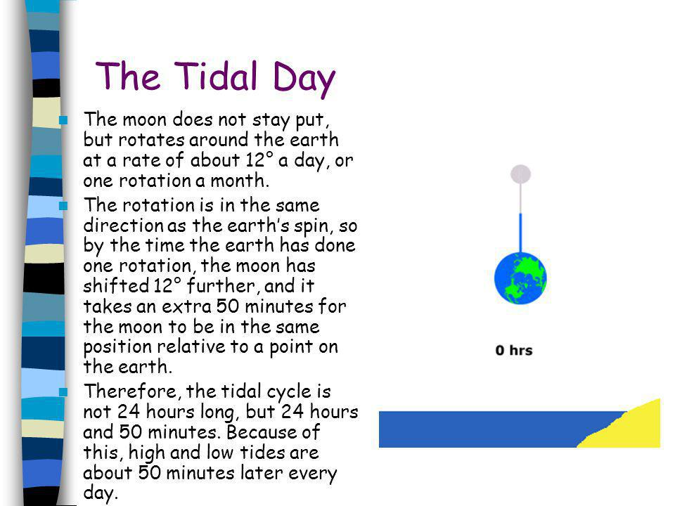 The Tidal Day The moon does not stay put, but rotates around the earth at a rate of about 12° a day, or one rotation a month.