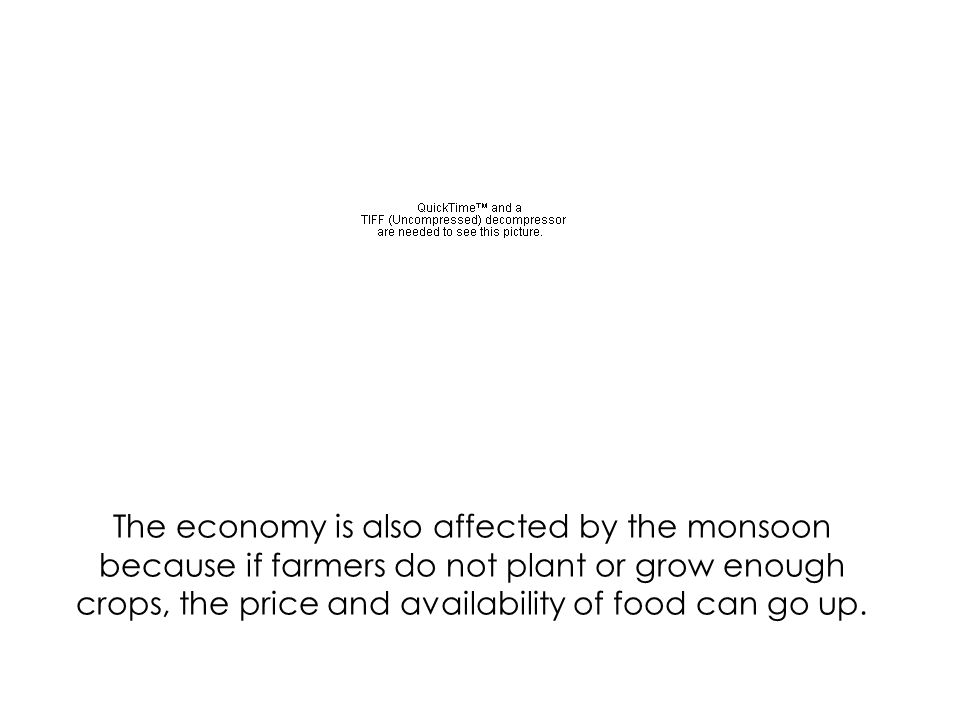 The economy is also affected by the monsoon because if farmers do not plant or grow enough crops, the price and availability of food can go up.