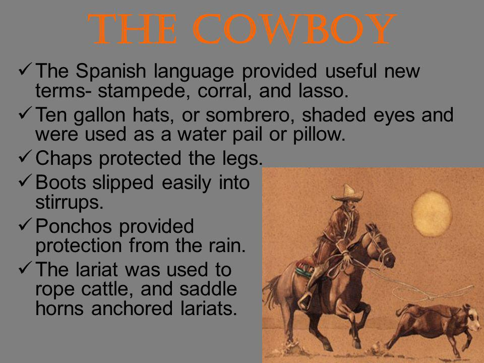 The Cowboy The Spanish language provided useful new terms- stampede, corral, and lasso.