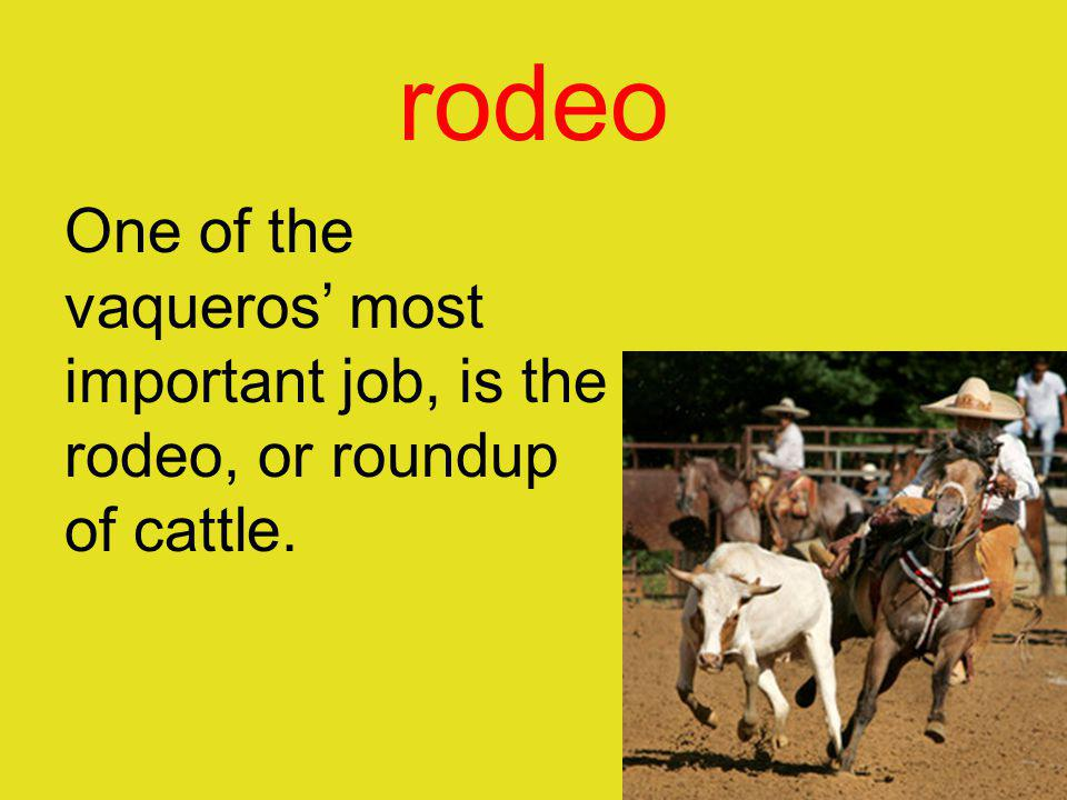 rodeo One of the vaqueros' most important job, is the rodeo, or roundup of cattle.