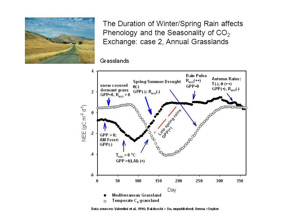The Duration of Winter/Spring Rain affects Phenology and the Seasonality of CO2 Exchange: case 2, Annual Grasslands