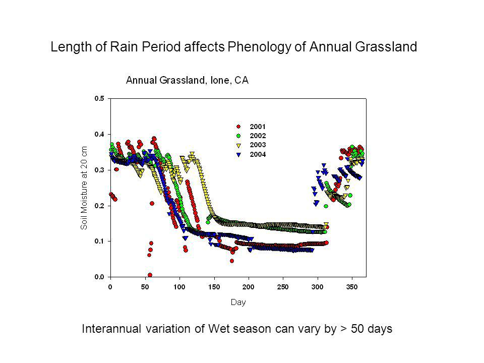 Length of Rain Period affects Phenology of Annual Grassland