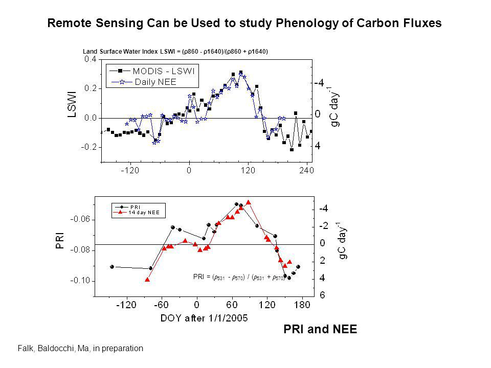 Remote Sensing Can be Used to study Phenology of Carbon Fluxes