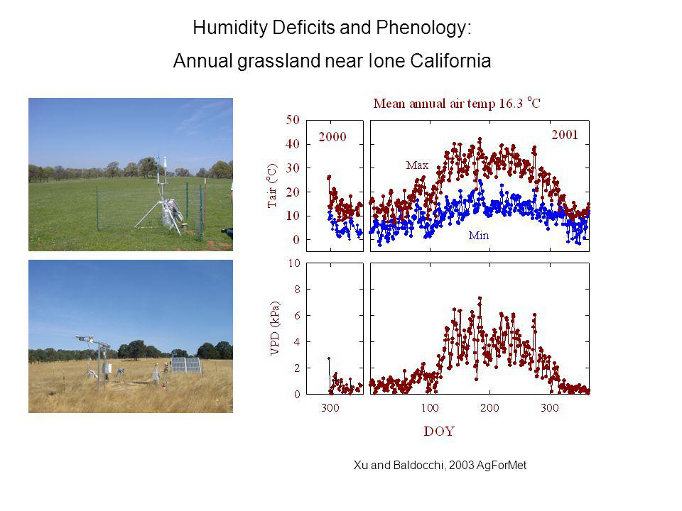 Humidity Deficits and Phenology: Annual grassland near Ione California