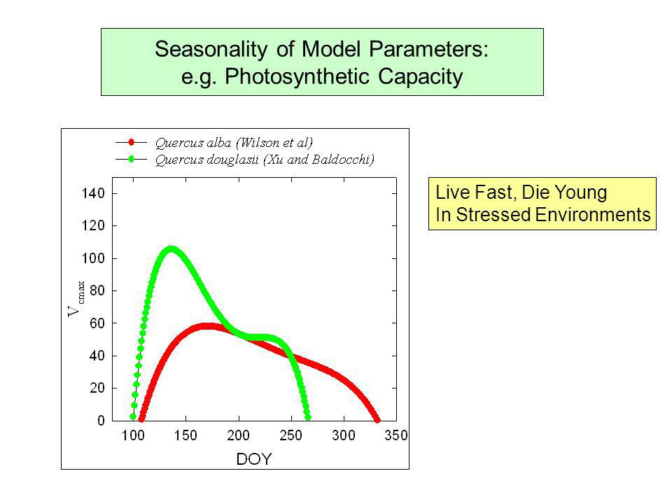 Seasonality of Model Parameters: e.g. Photosynthetic Capacity